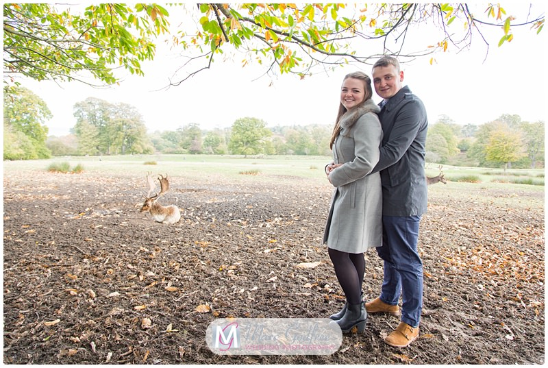 Nathan & Francesca - Pre-wedding Session Knole Park-1